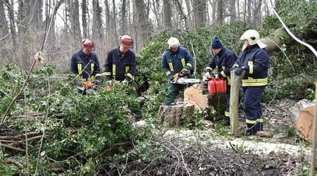 Die Kameraden Karsten Brosinski, Yves Kluge, Heiko Schmidt, Lothar Kliche und Anja Bähr packten tatkräftig mit an, um die Entwässerungsgräben in der Fasanerie freizulegen.