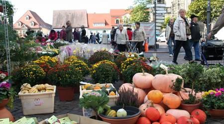 Reichlich Besucher nutzen die Gelegenheit für einen Bummel über den Herbstmarkt.